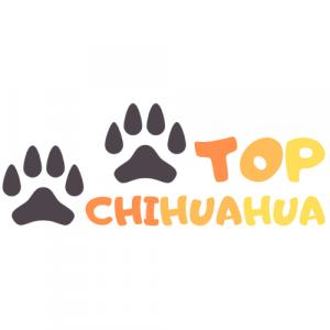 Logo Top Chihuahua